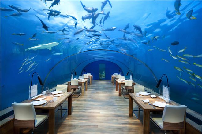 追寻深海之梦 探索最时髦的海底酒店和餐厅