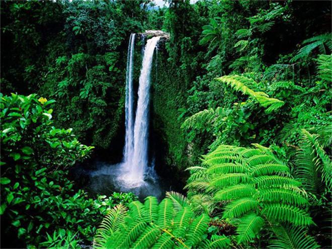 """豪宅精选     亚马逊热带雨林 穿越""""地球之肺"""" 位于南美洲的亚马逊河"""
