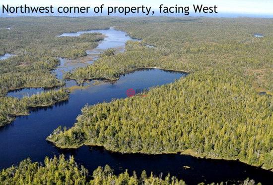 ir)、雪松、松树、枫树、赤杨木和三角叶杨-加拿大 卡尔弗特岛珍贵土