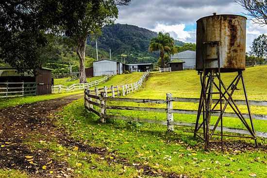 澳洲 | 北京白领卖房当农场主 请不起工人自己当农民