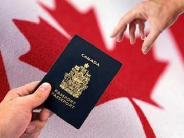 加拿大 | 2017年度移民配额 最受关心的两类增加