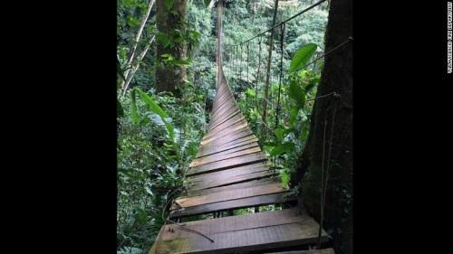 哥伦比亚吊桥垮塌 出现数十人伤亡具体原因在调查中