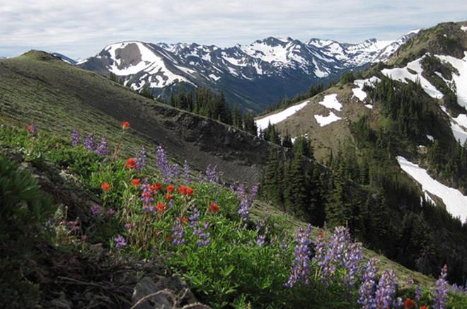 春季到西雅图国家公园徒步旅行
