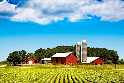 因为农场固有的稀缺性,决定了这片土地本身就比一般的房产更不容易贬值