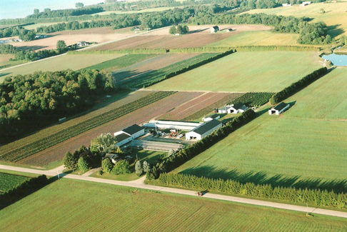 只要善加经营,农场达到20%的年平均收益率并不算特别困难