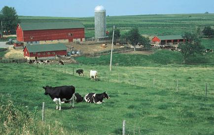 安省的农业土地使用规划没有对农业投资做出任何特别的限制