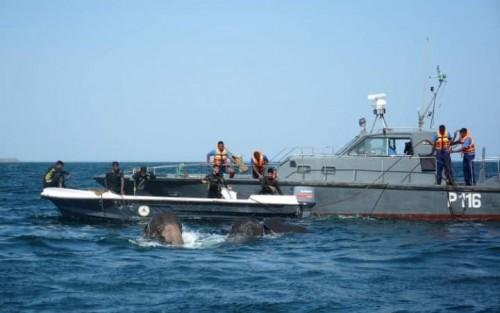 在几周前,海军在同一地区进行了类似的拯救行动