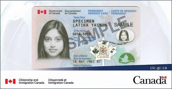 移民部长透露新措施,和华人息息相关 | 加拿大