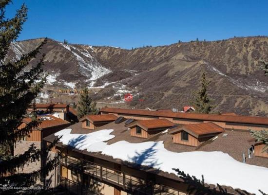 这栋位于Snowmass Village 400 Wood Road 的2卧房产,建筑面积86平米,售价39.7万美元,折合人民币261万元。可以方便地到达克雷斯特伍德的滑雪室和滑雪场以及水疗中心。