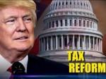 【洞悉】特朗普税改哪些你需要知道?| 美国