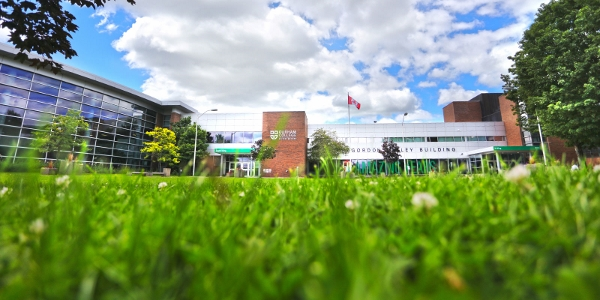 加拿大留学毕业生未必拿到工签,移民律师:读公立高等院校最稳当