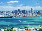 11月份奥克兰房源创10年新高 但销量同比大幅缩水 | 新西兰