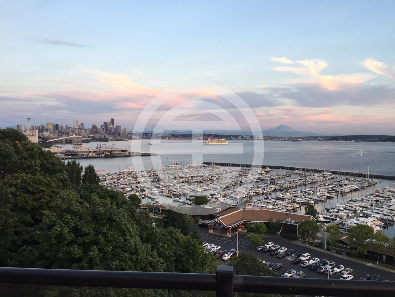 豪宅俯瞰停泊着数百艘游艇的埃利奥特湾码头