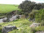 维州发展最快地区的临河住宅开发用地,带来珍贵买地建房机会 | 澳洲