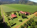 想靠务农致富?凯恩斯优质农场助你圆梦 | 澳洲