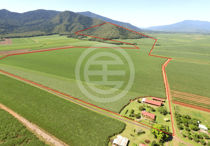 得天独厚的环境和优质土地都是最宝贵的资产,带来广阔的发展前景