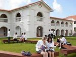 新西兰向中国学生抛橄榄枝:公立大学接受高考成绩