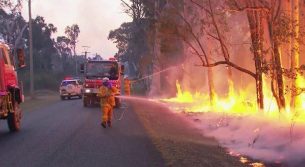 澳大利亚南部热浪_澳大利亚南部热浪 极端天气致森林大火频发 - 热点