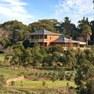 南澳大草原豪宅美如画 住进世外桃源不用两百万