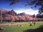 美国华州公立大学学费不涨反或下调25%