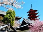 """到日本留学生活,总要懂的一些""""规则"""""""