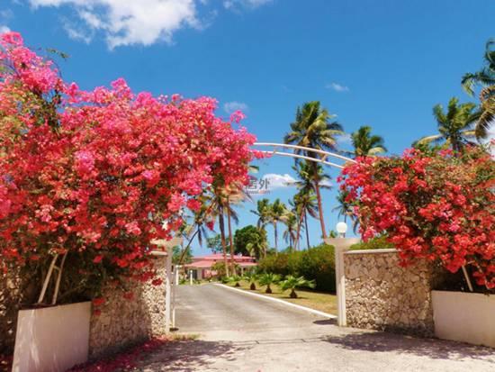 投资瓦努阿图持续升温,海景住宅带来绝佳置业机会