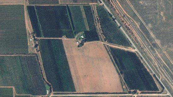 """位于澳洲 维多利亚州,名为""""Diamond Ridge Fruit""""的水果农场俯视图。"""