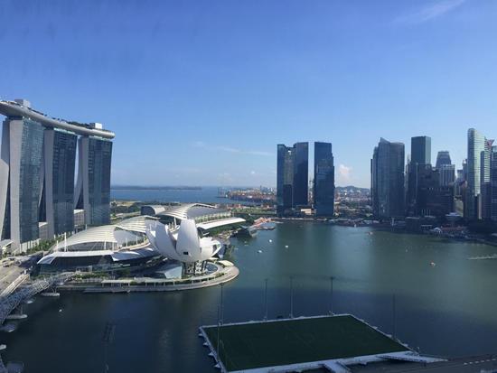 新加坡   两项目大卖 新私宅全年销量料超去年