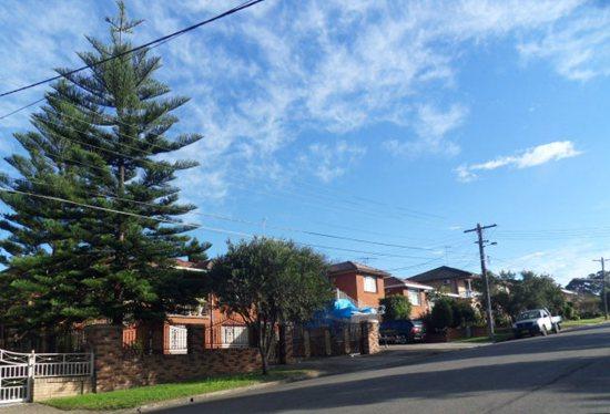 悉尼房价全球第二高?白领只能郊区购房 | 澳洲