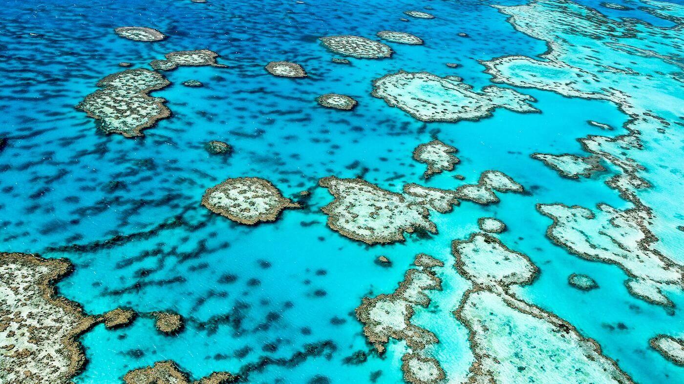 道格拉斯港是通往热带北昆士兰世界遗产奇观的门户,也是距离大堡礁最近的大陆港口