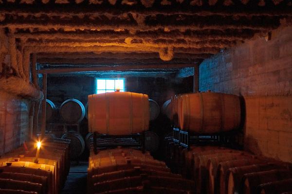 安大略省著名葡萄酒酿酒厂,拥有巨大价值和良好发展潜力 | 加拿大