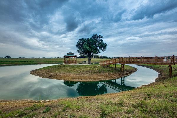 投资德克萨斯Oakland牧场,环境优质且带来丰厚商业回报 | 美国