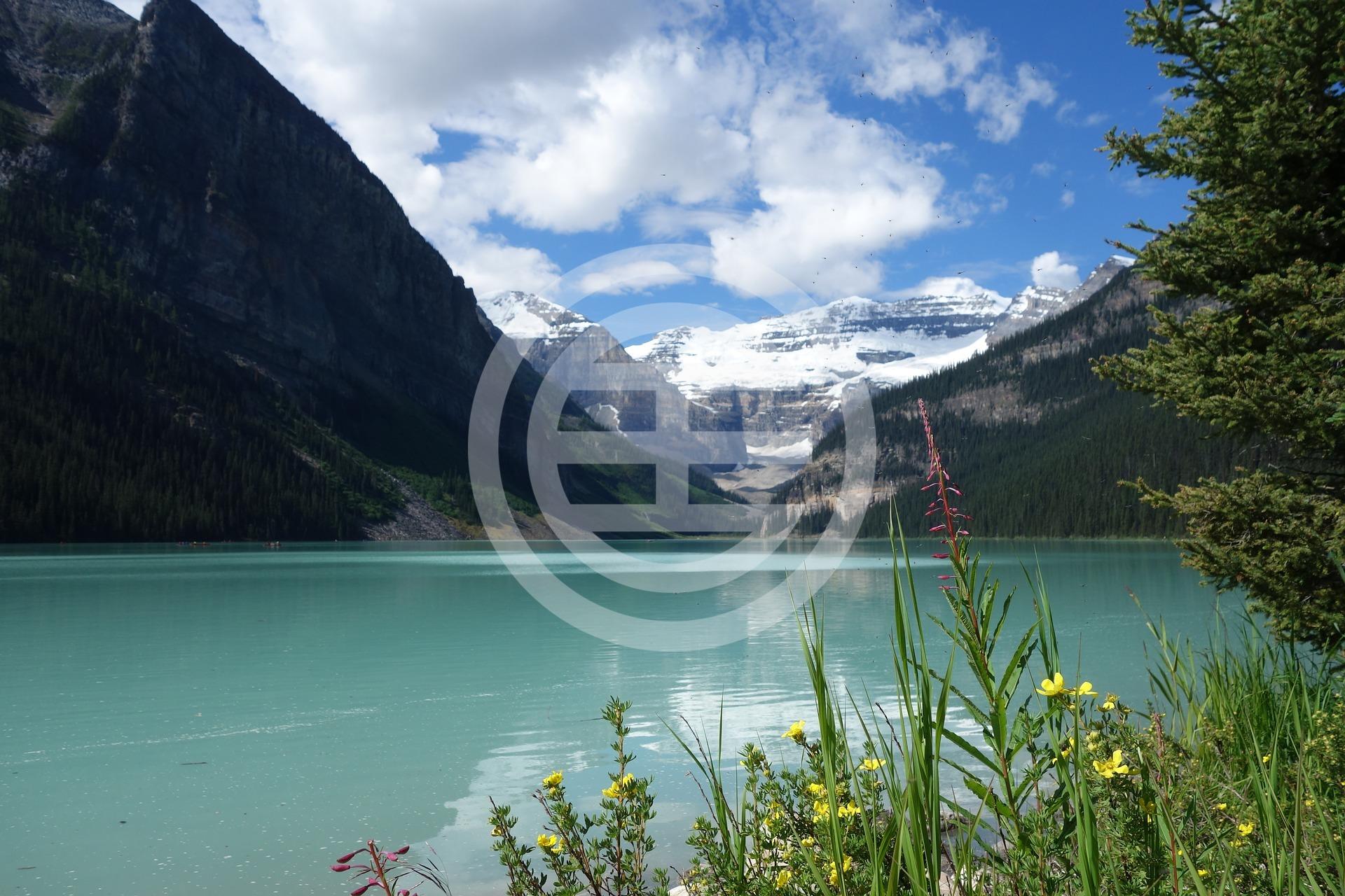 风景秀丽的路易斯湖(Lake Louise)是班夫(Banff)国家公园内的一个着名的旅游胜地,在卡尔加里以西180公里