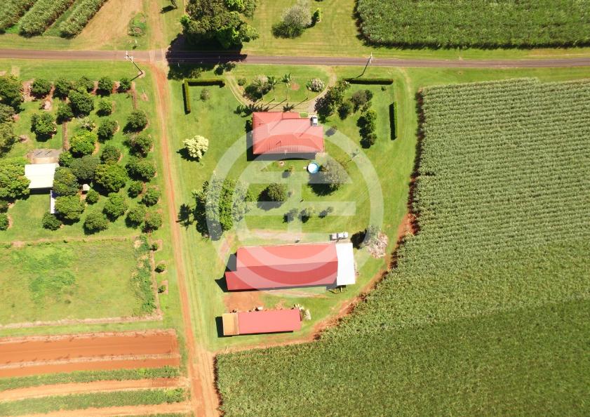 Green Hill優質土地擁有舒適的住宅和完善的農地設施,能幫助您開展許多業務