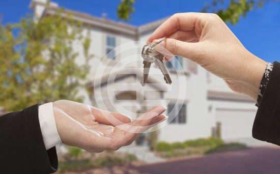 新西兰首次置业的看过来 如何买房?