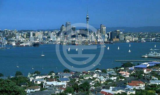 奥克兰住宅区综览——中区 | 新西兰