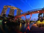 新加坡移民费用全种类解析