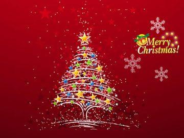 圣诞房产都在哪里?
