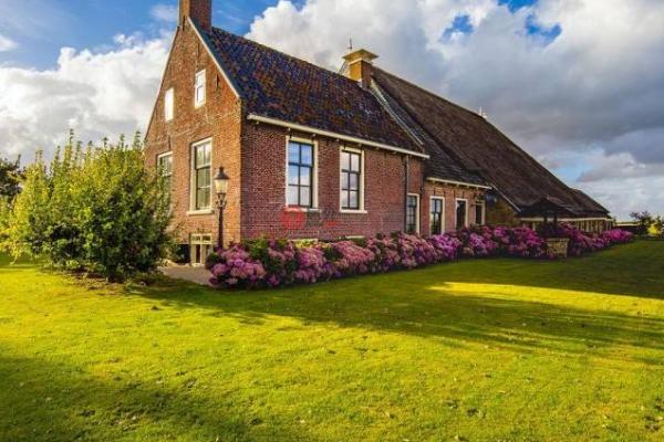 荷兰大学附近房价