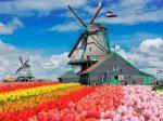 荷兰公布新政:移民融入考试ONA免考 移民永居更轻松!