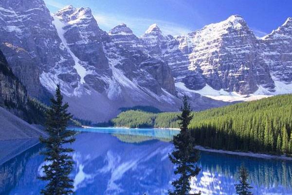 加拿大签证拒签保签