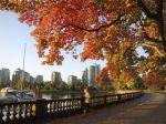 加拿大最适合华人移居的城市在哪里?