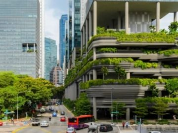"""新加坡如何倾力打造""""花园城市2.0""""?"""