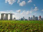 【2021物价】新加坡生活费一个月要多少钱?