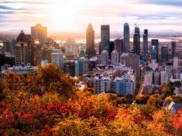"""居外IQI报告:疫情下全球22城超八成房价上涨 蒙特利尔""""领涨"""""""