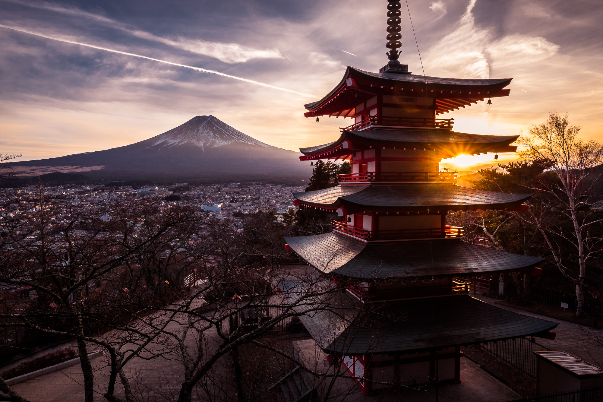 Japan to Ease Travel Restrictions: What We Need to Know